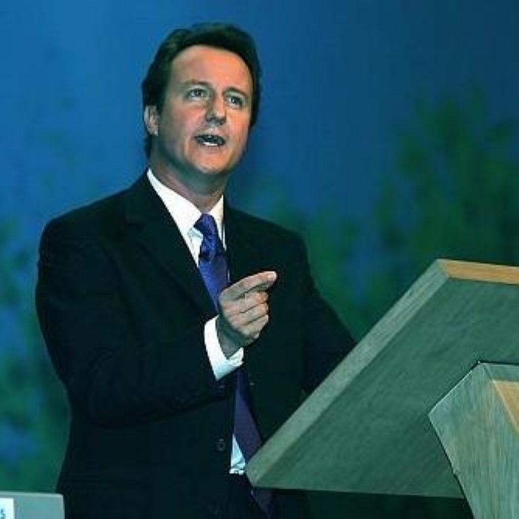 Cameron calls for society-wide effort