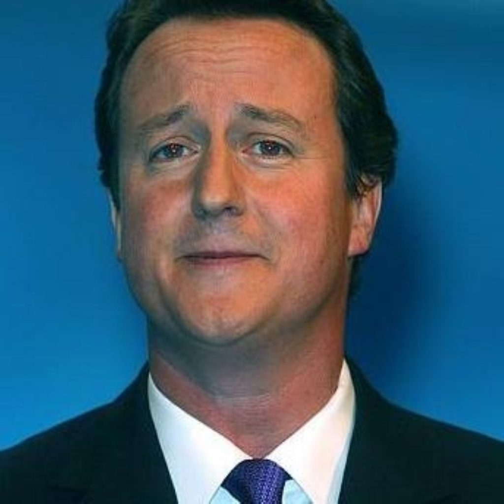 David Cameron to decide on Tory party green plans