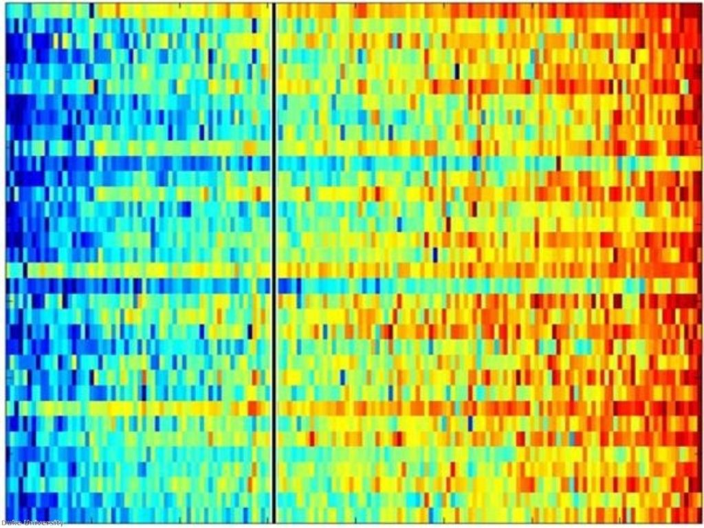 A genetic profile