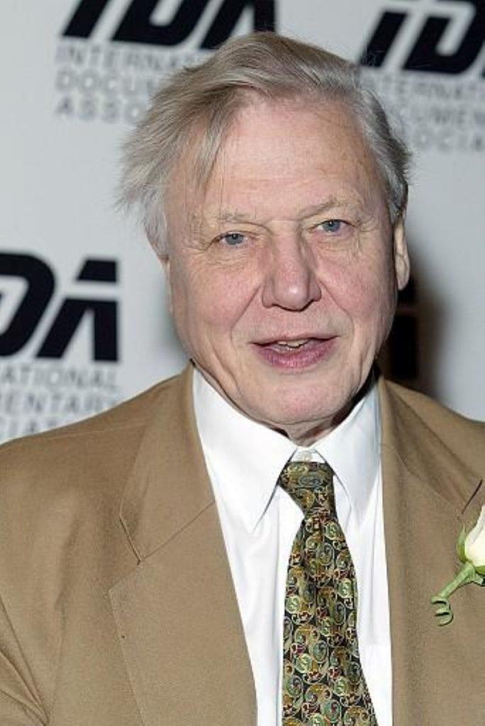 Attenborough is one of Britain's best-loved celebrities