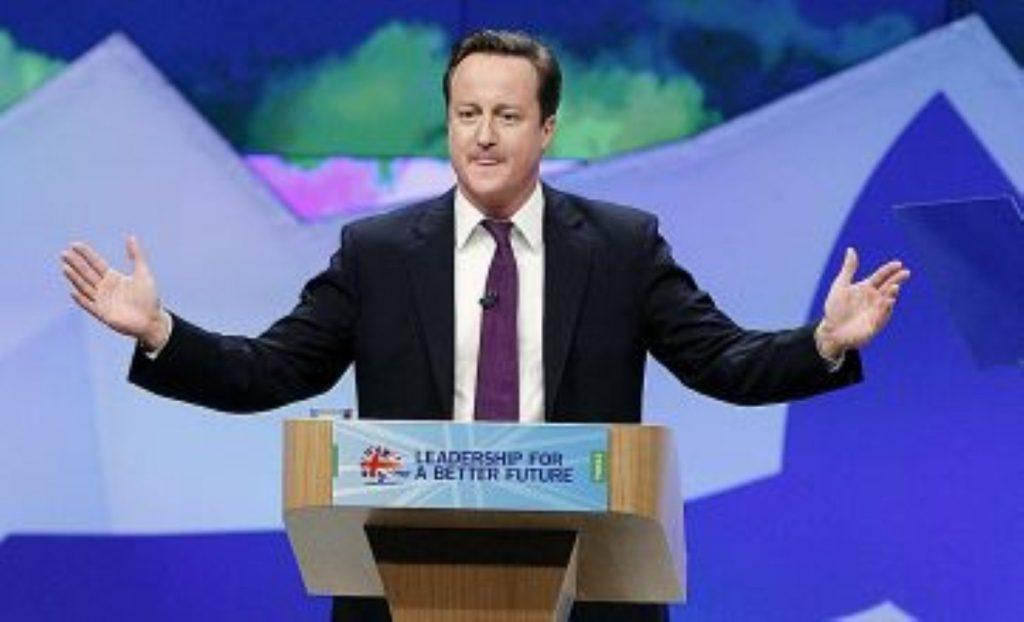 David Cameron: Playing both sides
