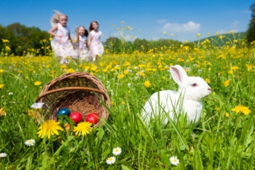 Easter idyll: Now with more plastic