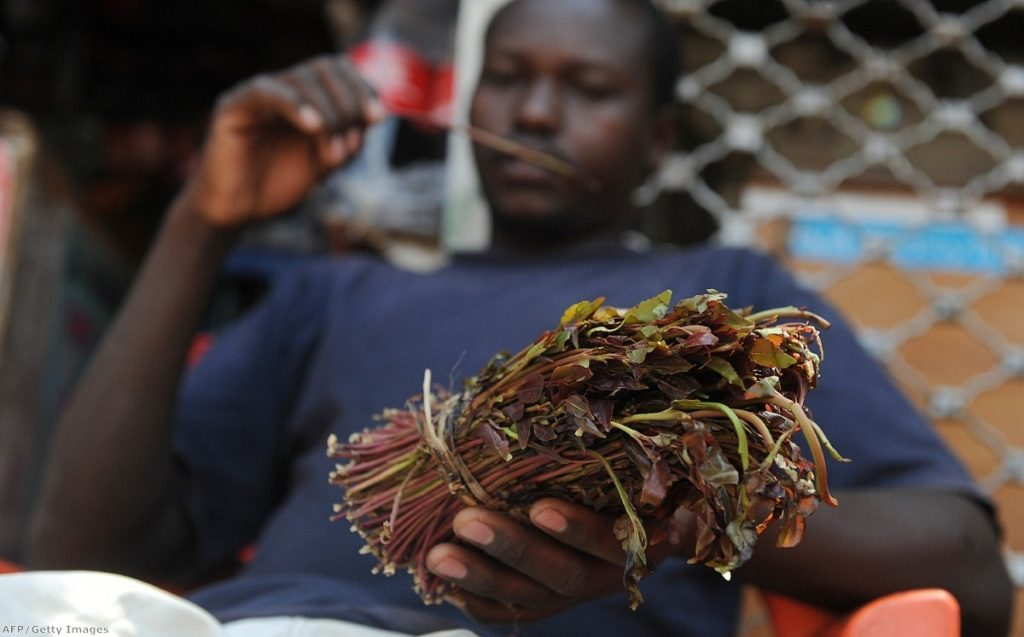 Khat is very popular in many African communities