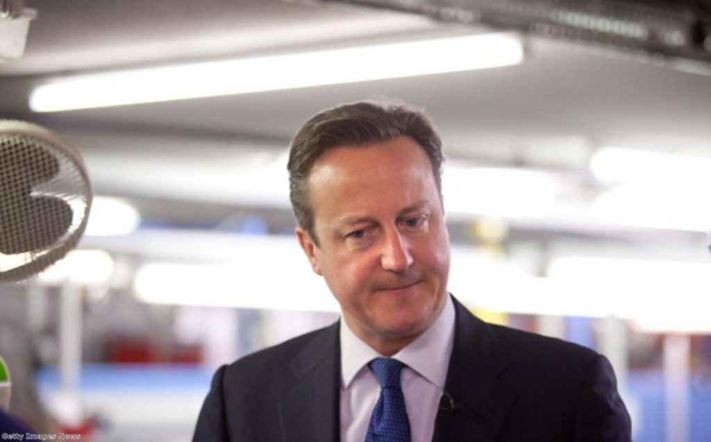 David Cameron: Failed to shed negative image of the party