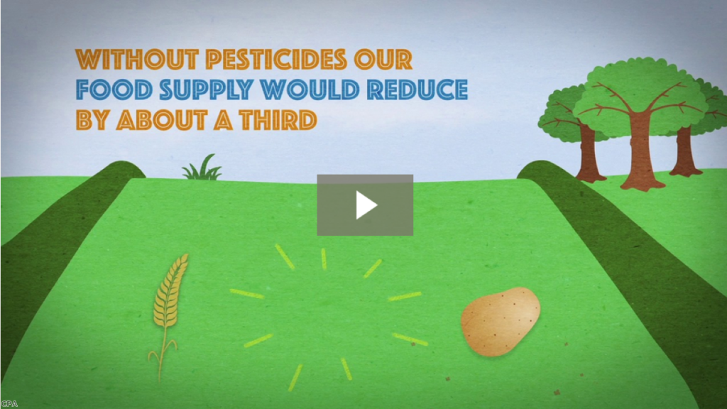 Pesticides in Perspective - Residues in food