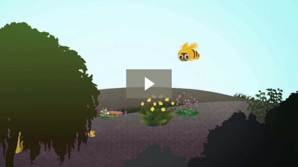 BBKA Animation
