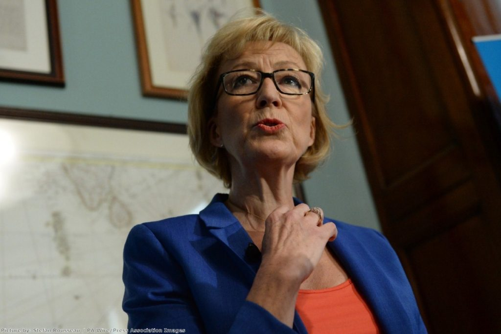 Andrea Leadsom: 'No minimum wage, no maternity or paternity rights, no unfair dismissal rights, no pension rights'