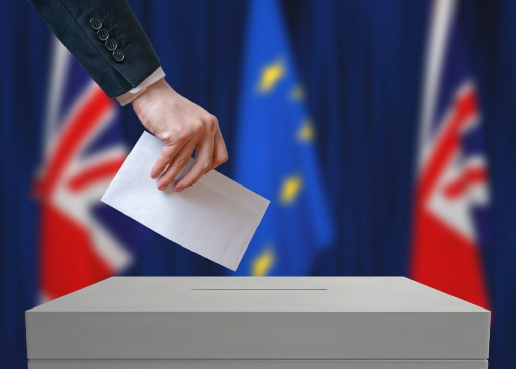 Single issue: Pro-EU votes could affect the general election