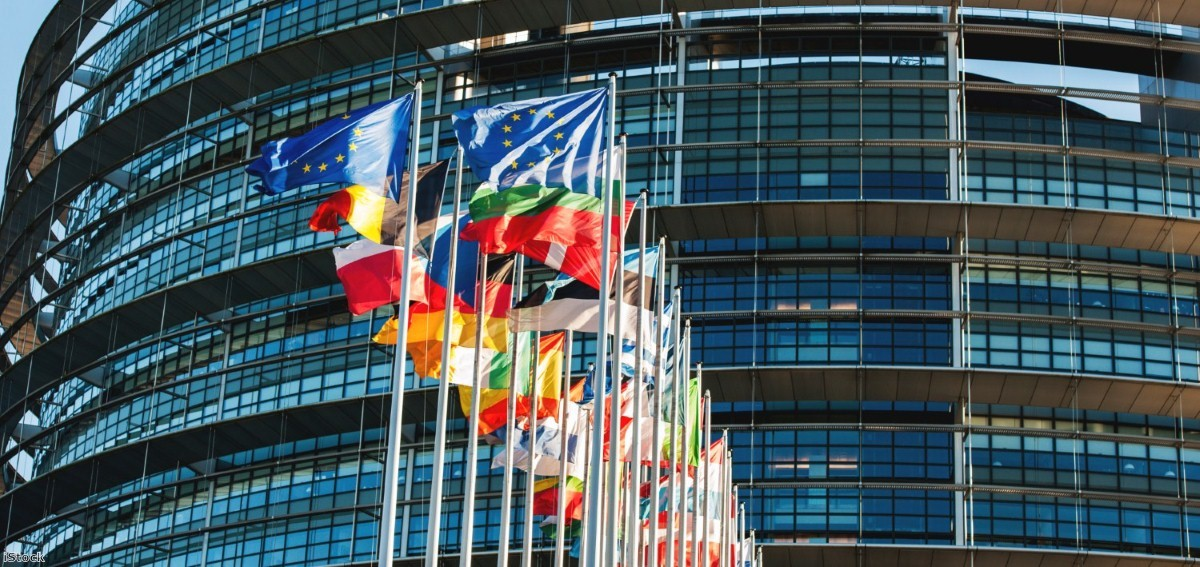 Flags in front of the European Parliament. | Copyright: iStock