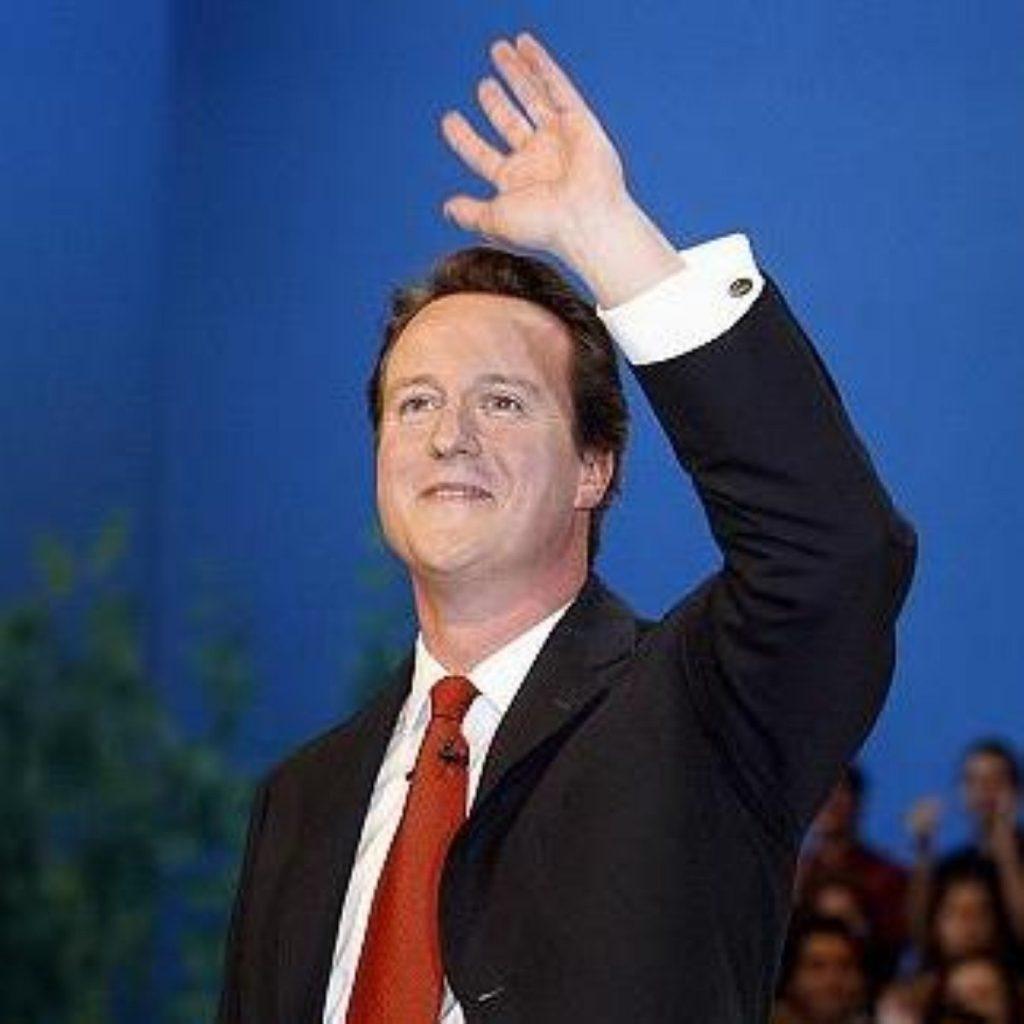 David Cameron greets the party faithful