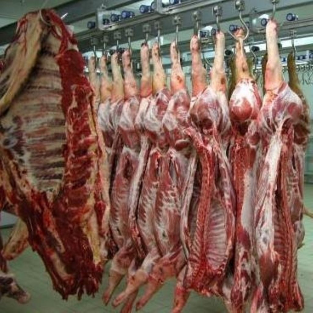 Animal rights outcry at Euro slaughter decision