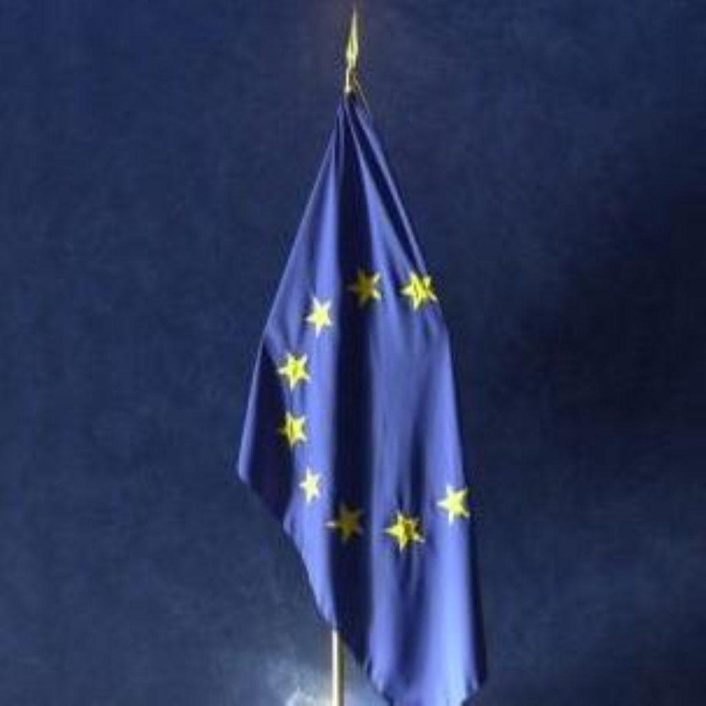 Lib Dems call for referendum on EU