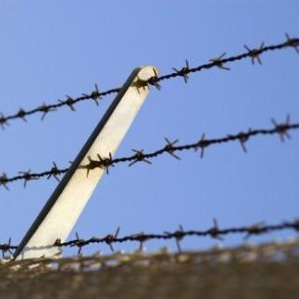 Barbed wire over a wall