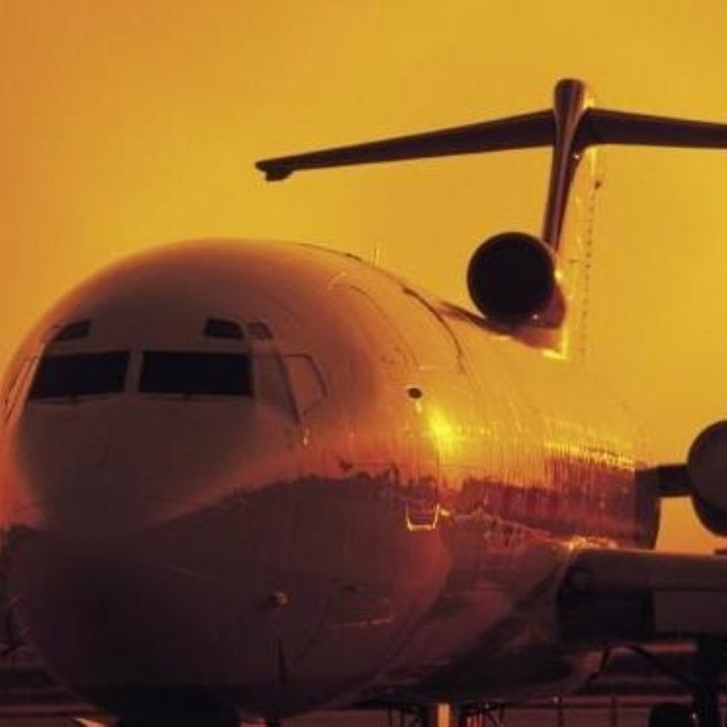 Government opposes aviation in renewables target