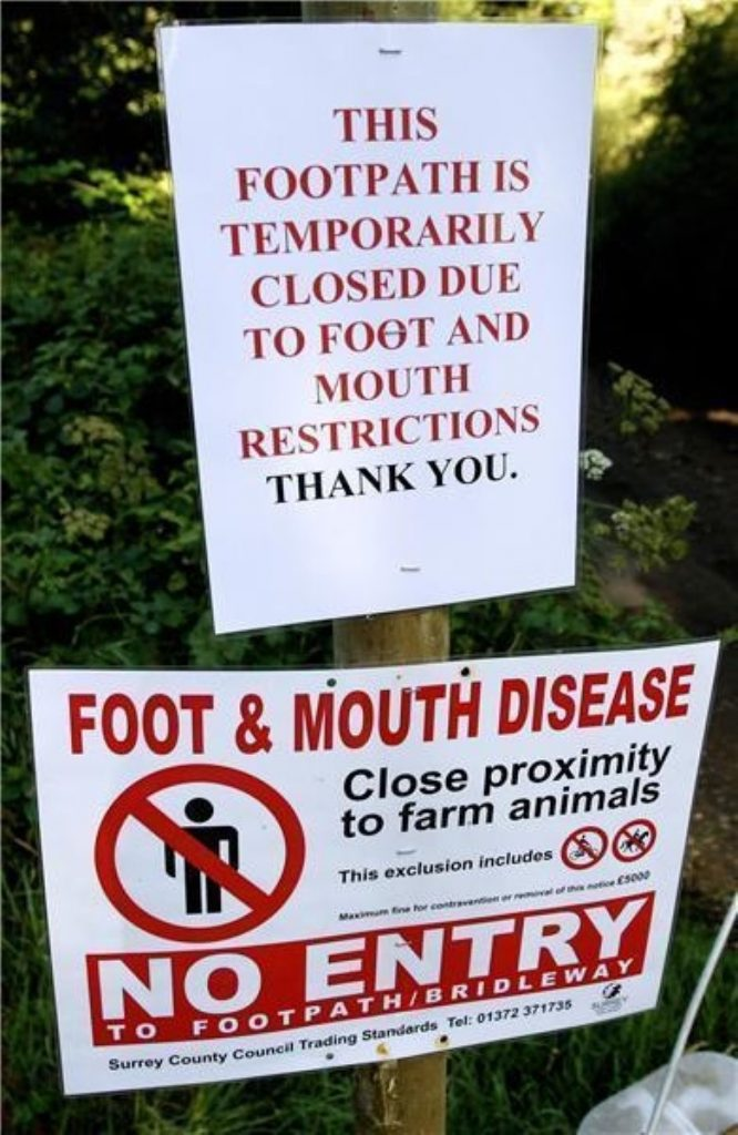 Further foot and mouth outbreak suspected
