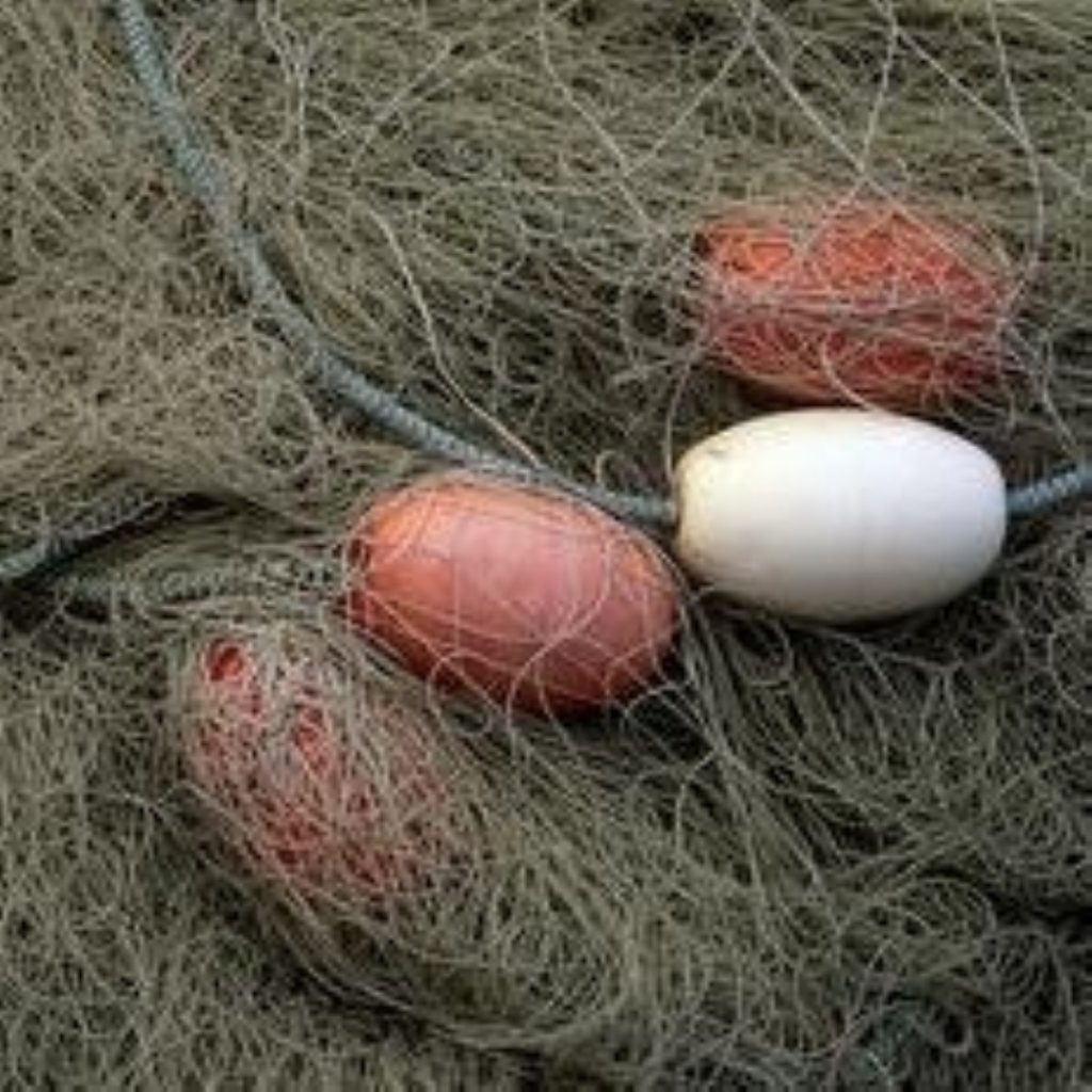 UK fishermen win increased fish quotas