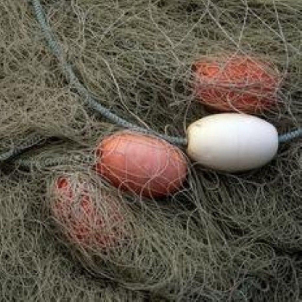 Fishermen claim majority of fish being thrown back