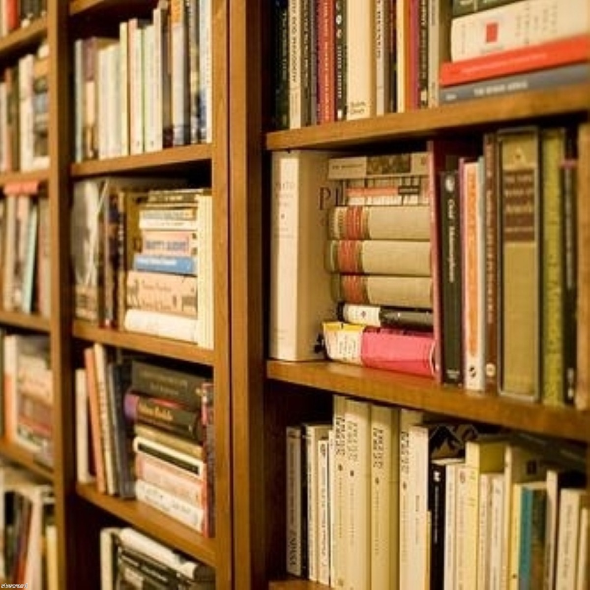 The prison book bank: A campaign started on Politics.co.uk