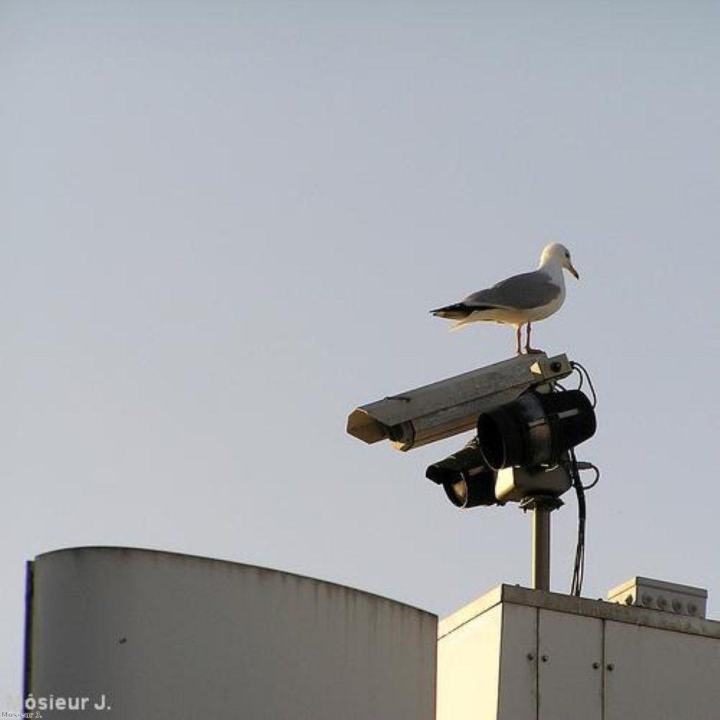 CCTV and Ripa have come to irritate civil libertarians