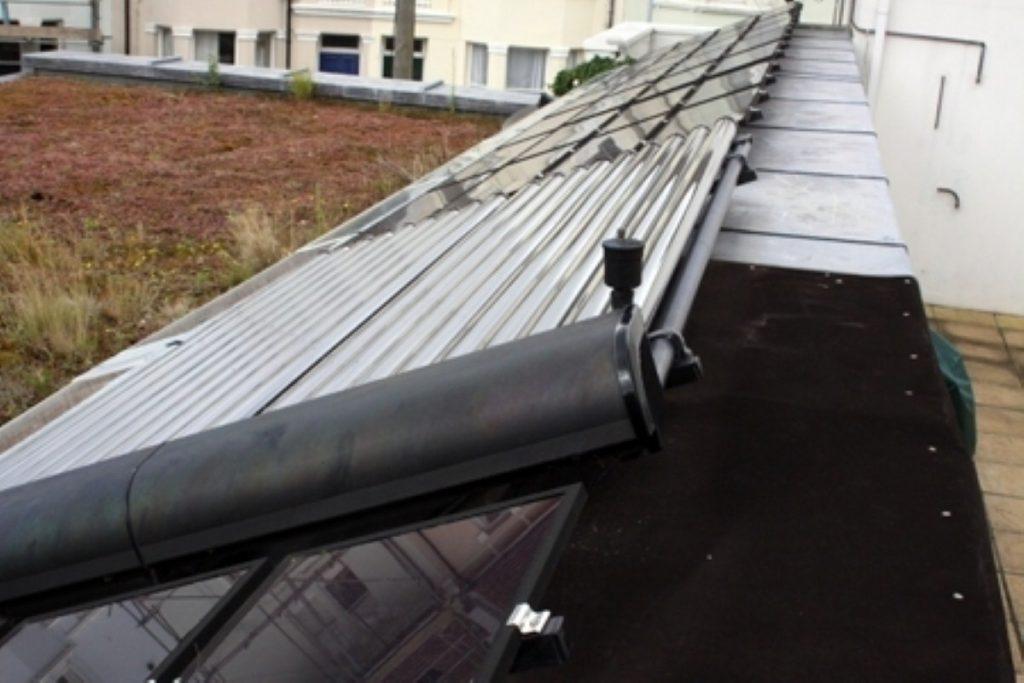Solar panel spat growing