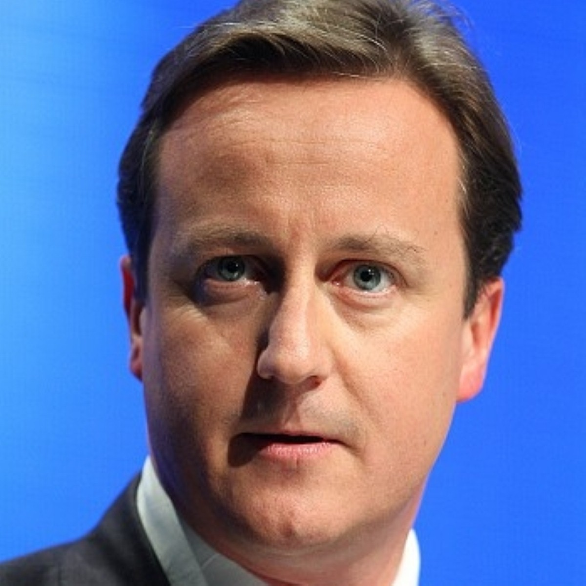 Cameron: Bold Britain is pro-business
