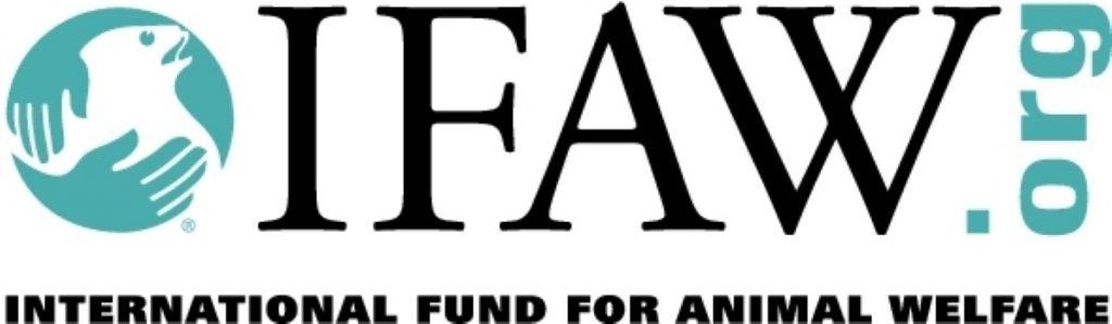 ifaw-logo