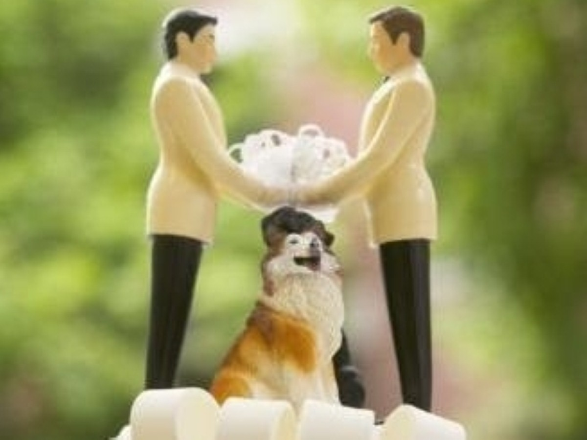 Gay marriages in church looking hopeful