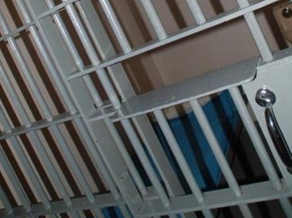 Prisoner votes ruling should be challenged, David Davis believes