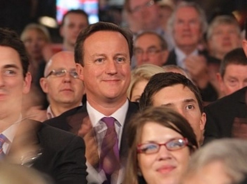 Keep smiling: Cameron among his worst enemies.